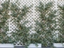 53 ft. truck container full of silk trees & silk plants headed for Maryland