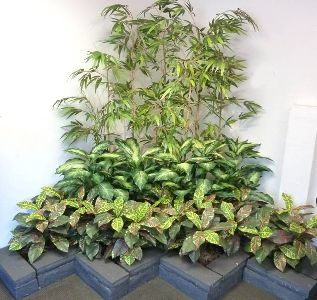 Tiered plantings