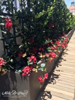 artificial-plants-Dezine-penthouse-balcony