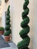 makebeleaves-UV-spiral-topiaries