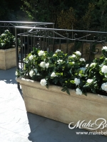 uv-gardenias-in-rect.-planters-Copy