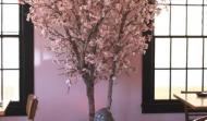 cherry_blossom_tree2