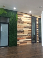 office-faux-living-wall