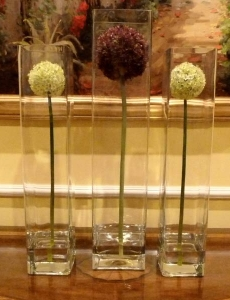 Tall Allium Ball