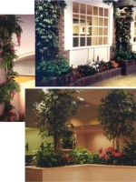 Custom Plantings Collage 12