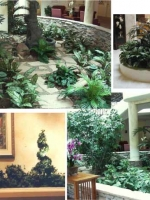 Custom Plantings Collage 13