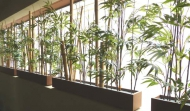 bamboo_balconey_600