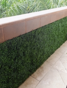 UV_boxwood_balcony_wall3