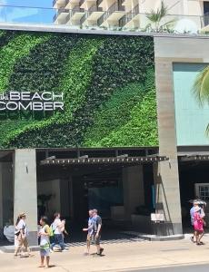 Outrigger hotel, Waikiki Hawaii | Custom Make Be-Leaves UV Green Wall