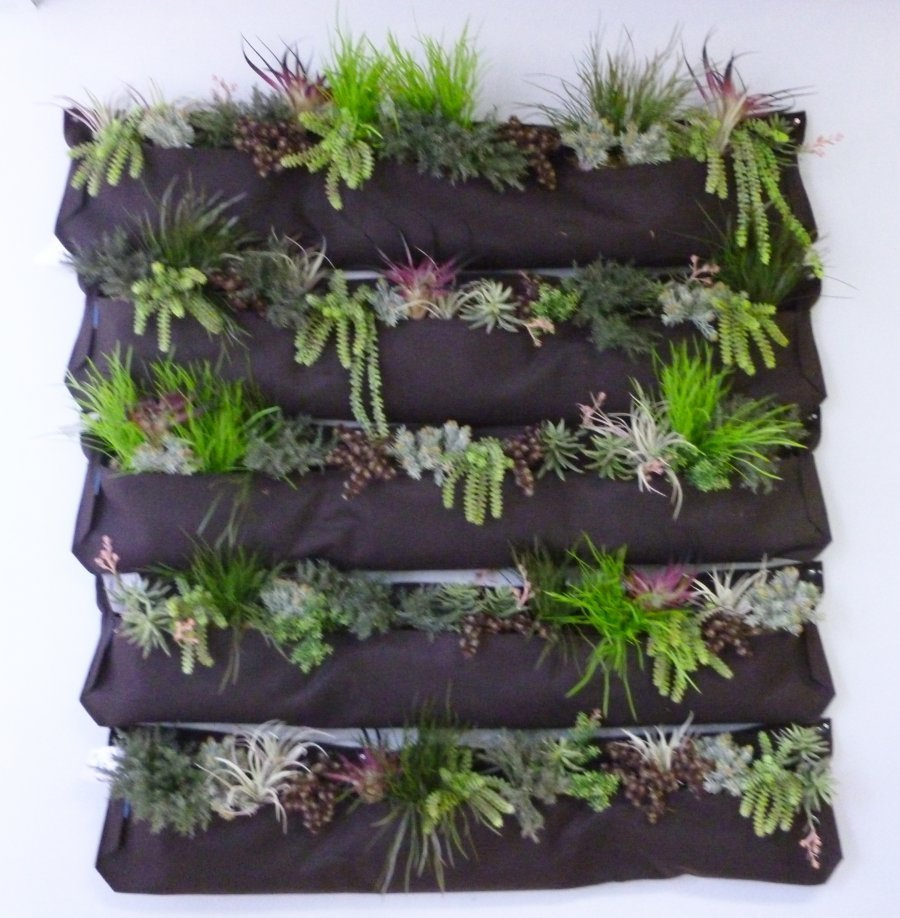 Charmant Faux Succulent Wall Pockets