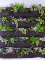 faux-succulent-wall-pockets