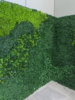 mixed-green-walls-2