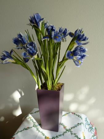 Sunflowers & Irises