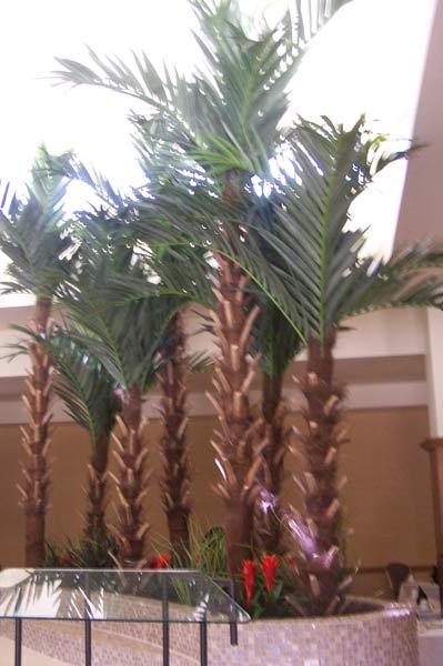 Atria_Palm_Desert600