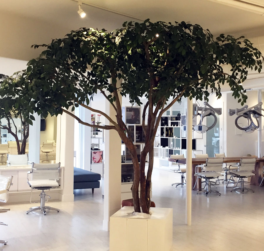 madison-salon-designer-tree