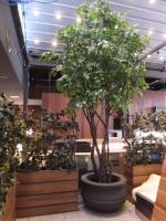 UV-faux-15ft-Ficus-tree-trellises