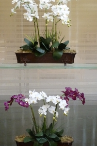 Make Be-leaves artificial-phaleanopsis-orchids