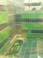 Princess-Margaret-Hospital-Toronto