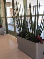 VA Hospital - Sepulveda 1
