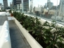 Manhattan Sky Room Lounge