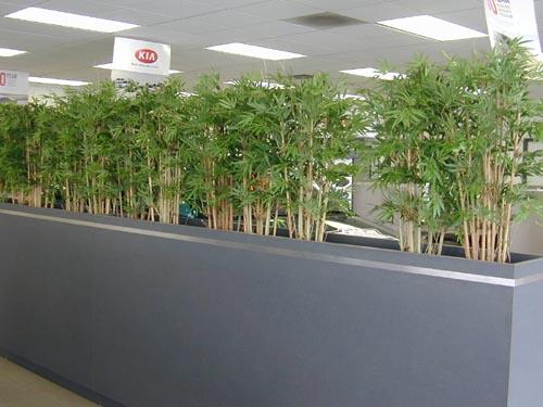 BambooPlanting