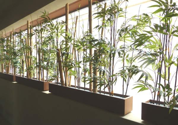 Bamboo_balconey