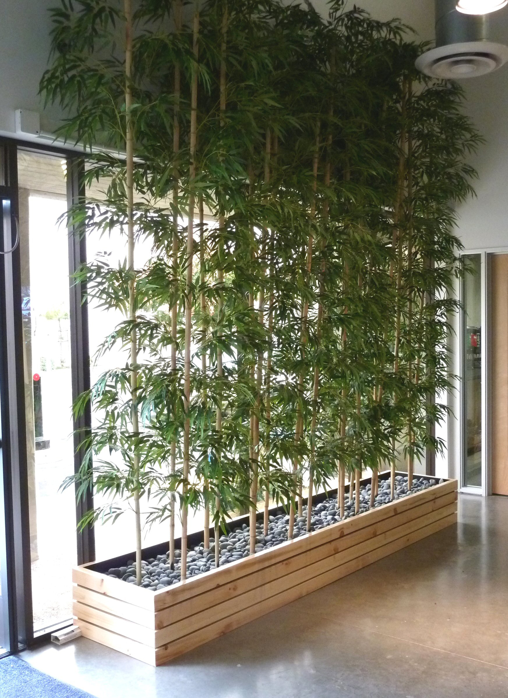 • <strong>Bamboo privacy plantings</strong>: our stylish, contemporary bamboo plantings will provide privacy while allowing light through – a great balance for your special event.