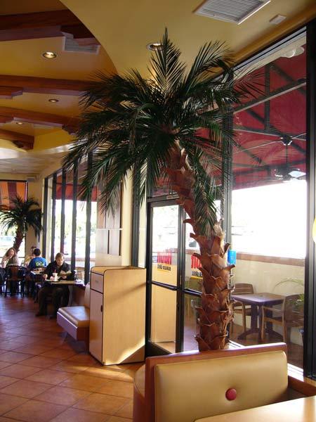 Habit_Burger_restaurant_lg