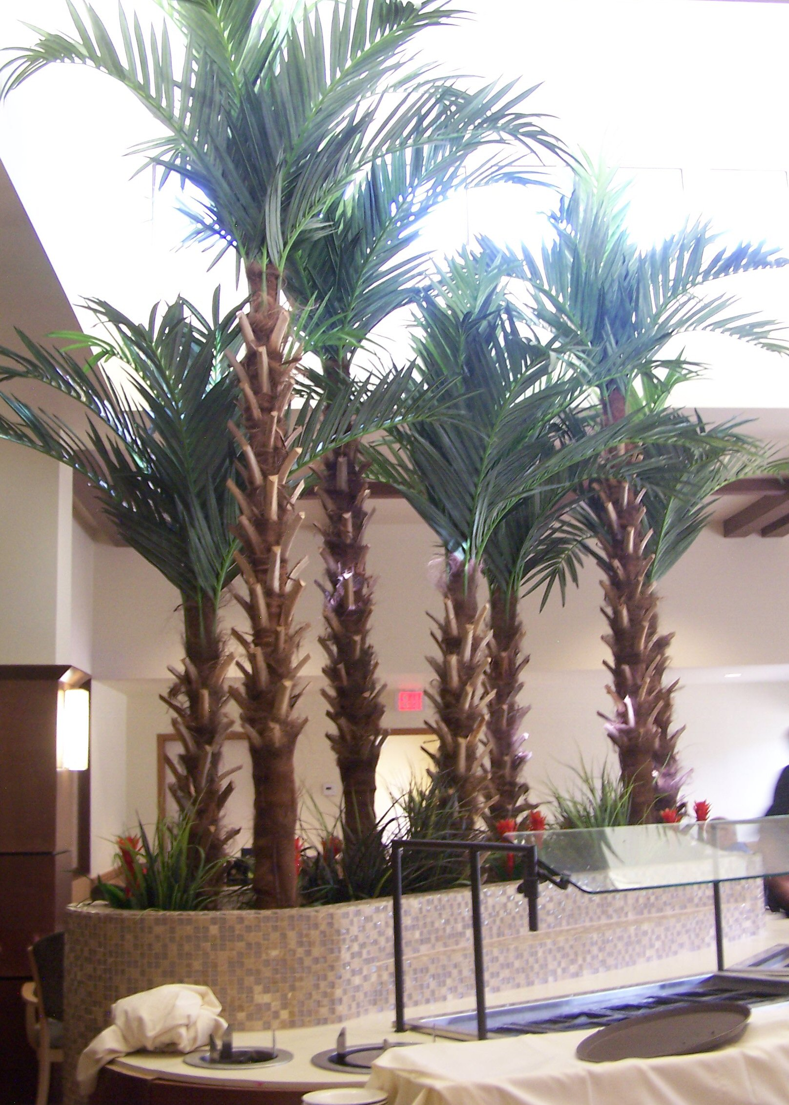 Make Be-Leaves large format specimen, preserved Palms, artificial trees for a Healthcare Facility lobby.