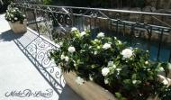 UV gardenias Rect