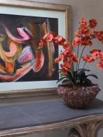 orange-phaleanopsis-orchids1