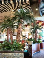 Elephant Bar Restaurant Palm trees