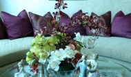 Mixed Orchid Arrange
