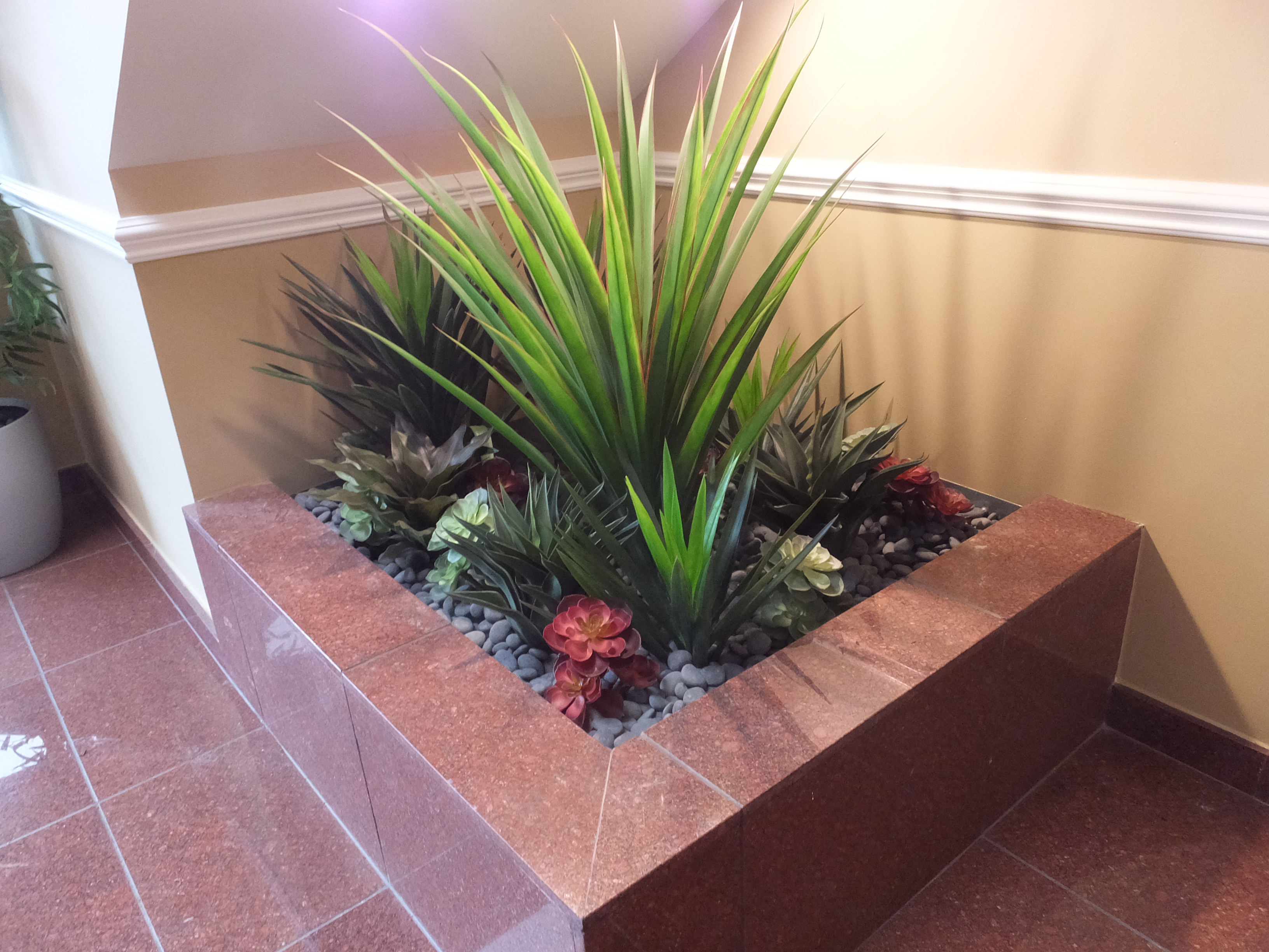 Commercial building: AFTER photo of planter above - with mixed succulents