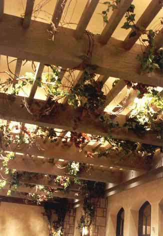 Trellis make be leaves - How to build a grape vine support the natural roof ...