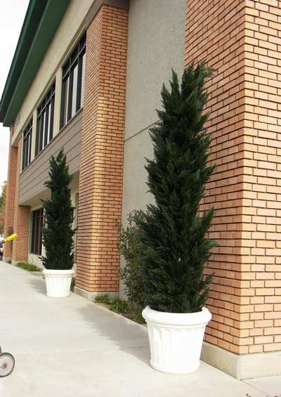 Make Be-leaves artificial 8ft Cypress