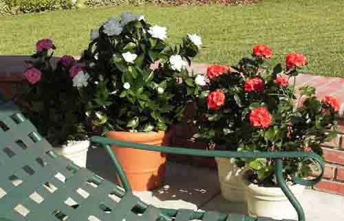 Make Be-leaves artificial Gardenia Geranium