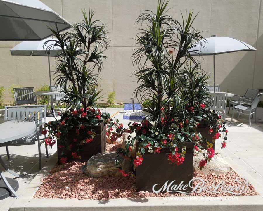 makebeleaves-outdoor-uv-racaena-margenata-trees