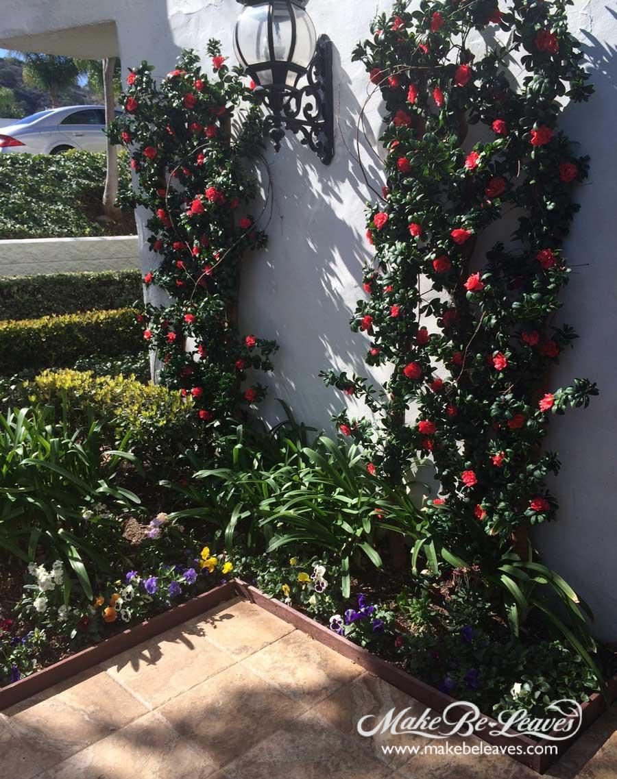 makebeleaves red azalea trellis planting