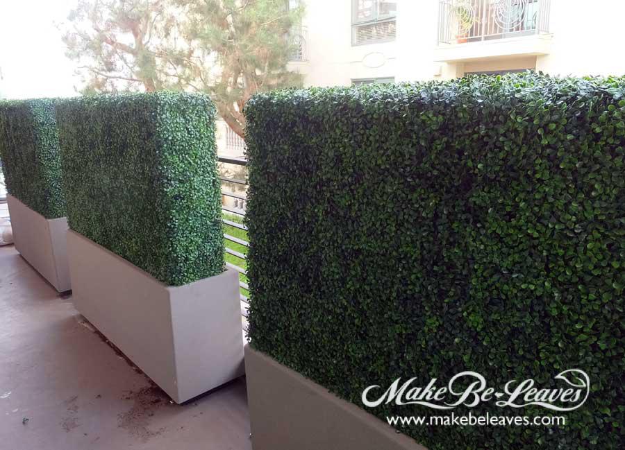 makebeleaves uv boxwood hedges