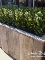makebeleaves uv boxwood loose-hedge