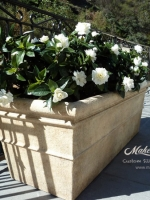 makebeleaves gardenias rect