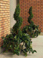 Make Be-leaves artificial spiral topiaries