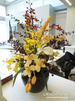 Large_Mixed_Orchid_Arrangement
