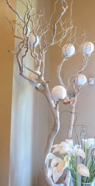 White Manzanita