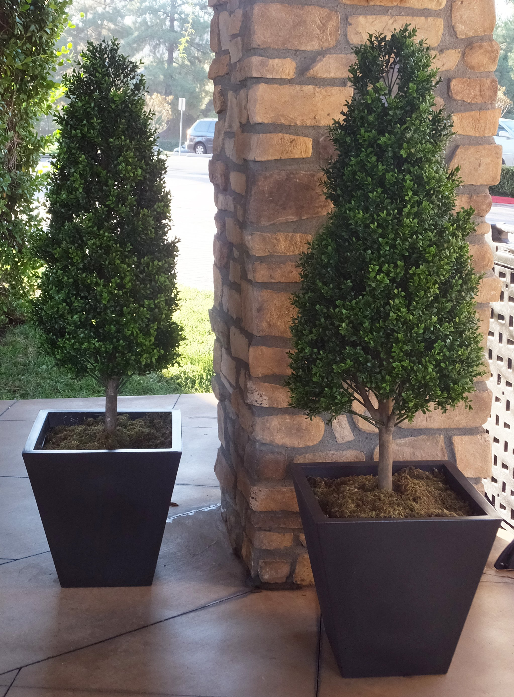 Elegant Artificial Topiaries The Perfect Holiday Purchase