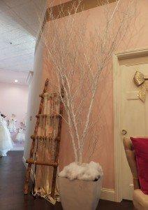white Mahogany trunks