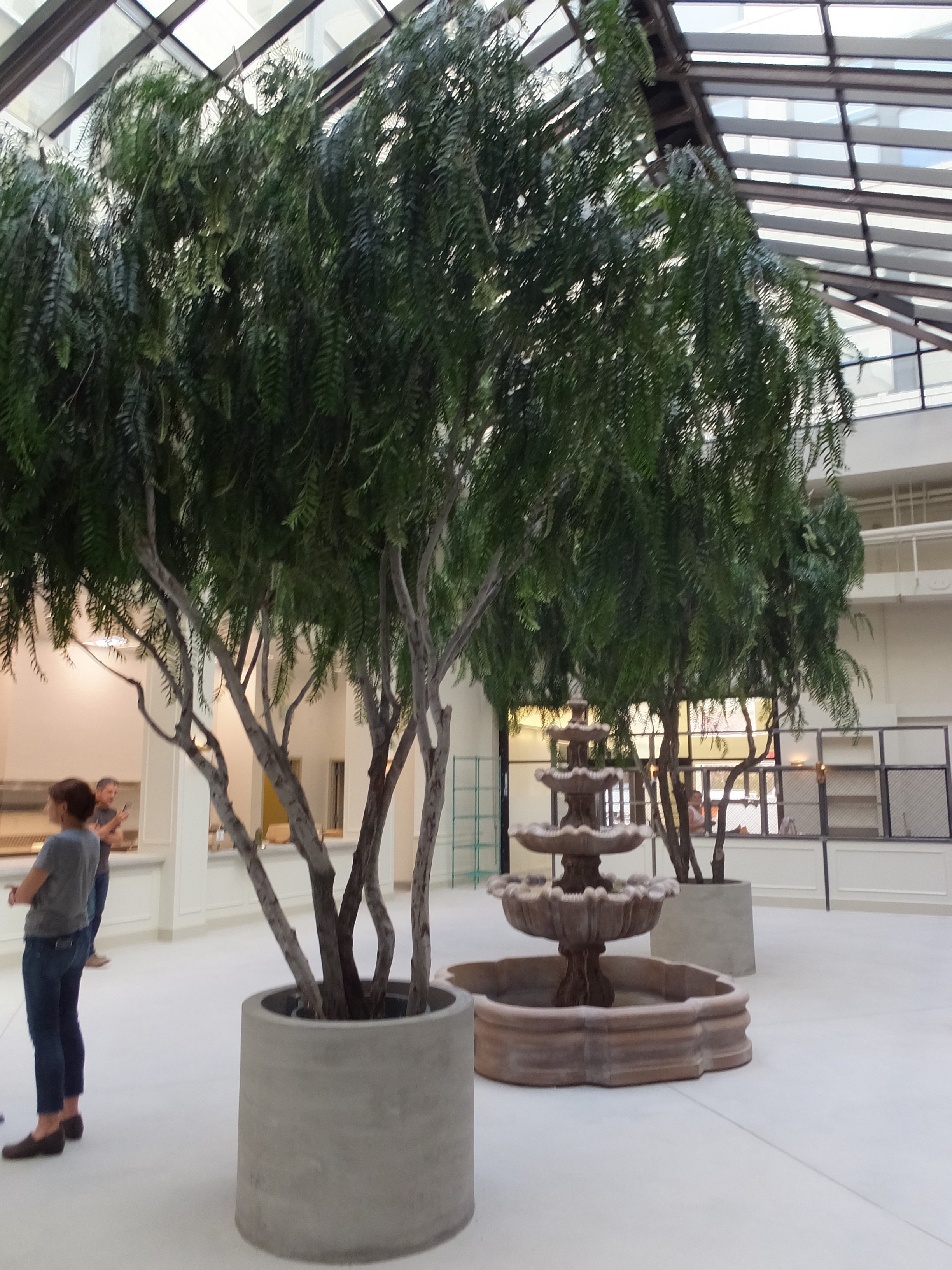 large artificial trees  life-like specimen