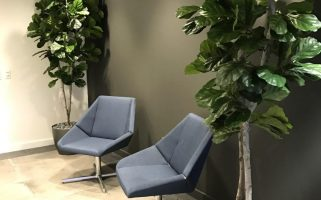 artificial floor plants & trees for skechers and wagstaff corporate