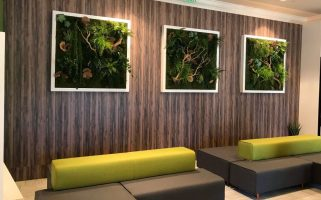 Framed Green Wall Panels Highlight KONICA TECH Expo Booth